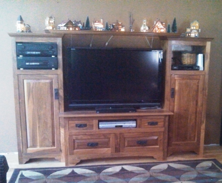 Entertainment Center Cabinets in Walnut