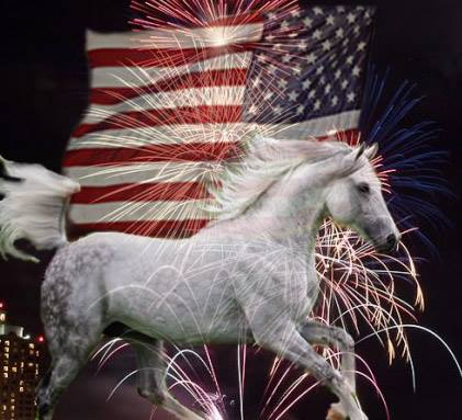 Equine Stylist 4th of July Graphic