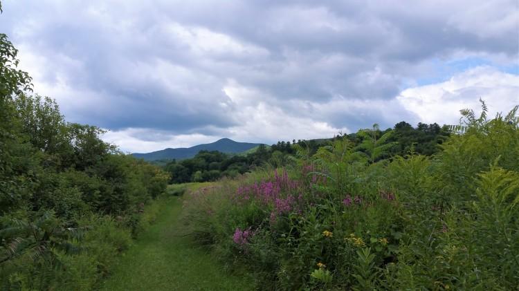 Paradise Park_Mt Ascutney